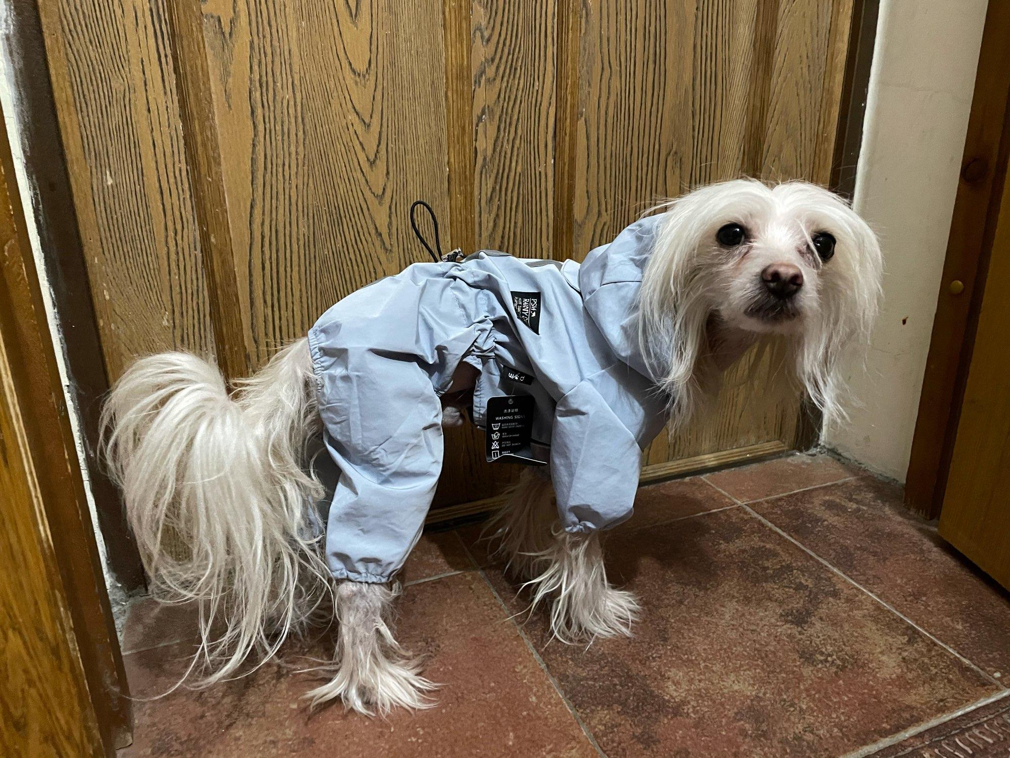 Pet Dog Puppy Reflective Raincoat Waterproof Coat Hooded Jacket