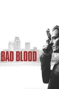 (加版)血仇第一季的海报