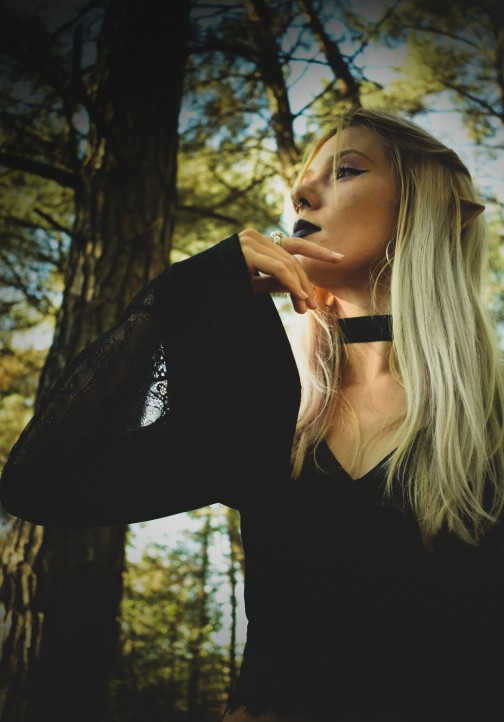 Gothic Long Sleeve Crop Top with Lace photo review