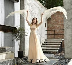 NEUE 2020 St. des A-line Champan Russische Langarm Grau Elsa-Gefrorene Pailletten Designer Bodenlangen Abendkleid Party Kleid