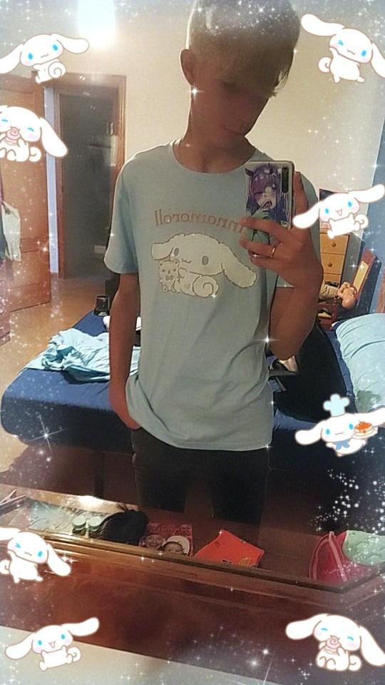 Harajuku T-shirt with Cinnamoroll Print photo review