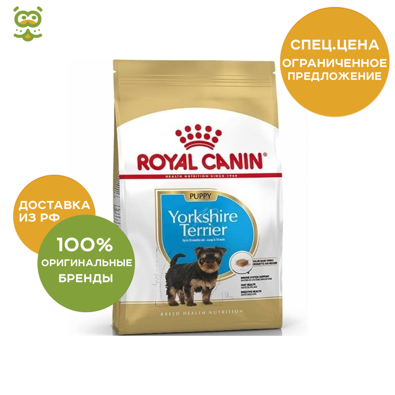 Фото - Royal Canin Yorkshire Terrier Junior food puppy breed Yorkshire terrier, Chicken, 500g. training central dandie dinmont terrier tricks training dandie dinmont terrier tricks