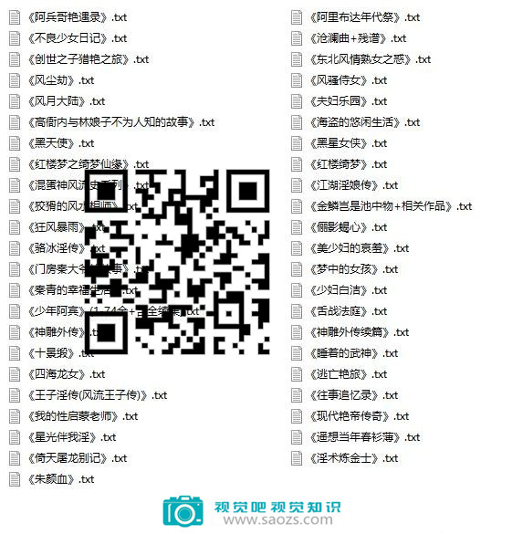 四十部网络著名被禁小说插图1