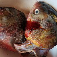 白玉菇海带鱼头汤的做法图解2