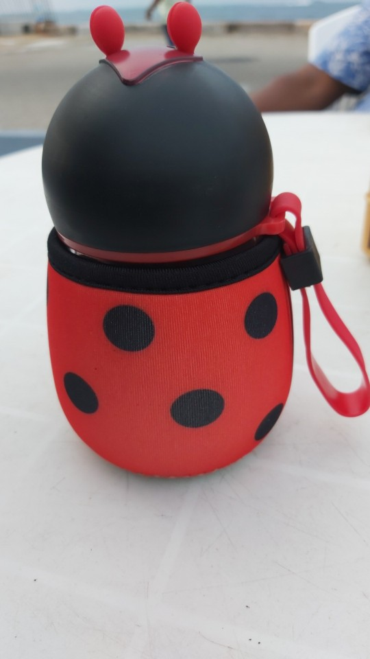 Hot 300ml Cartoon Bee Ladybug Water Bottle Glass Children Portable Drink Kettle Gift With Protective Cover Car Bottle|Water Bottles| |  - AliExpress