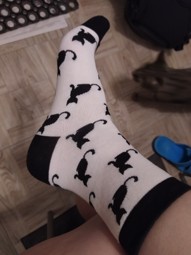 Cute Style Women's Funny Socks photo review
